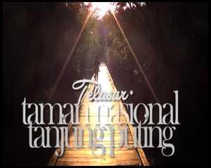 Telusur Tanjung Puting #1