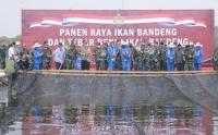 KSAL Panen Ikan Bandeng di Kampung Bahari Nusantara