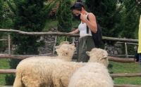 Potret Pevita Pearce Diserang Domba Saat Liburan