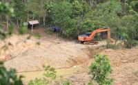 Aktivitas Tambang Emas Ilegal di Aceh Barat