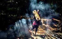 Melihat Proses Pengolahan Sagu Menggunakan Cara Tradisional di Maluku