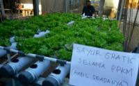 Aksi Berbagi Sayur Gratis di Kabupaten Gowa