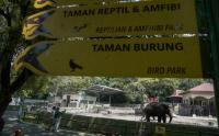 Kebun Binatang Yogya Uji Coba Pembukaan Tempat Wisata untuk Masyarakat