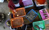 Pedagang Kerupuk Tulang Ikan Ubah Cara Penjualannya