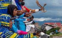 Penurunan Level PPKM di Palu, Kontes Merpati Balap Digelar
