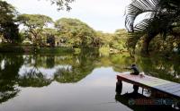 Taman Kota di Surabaya Mulai Dibuka untuk Umum