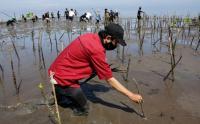 Relawan Peduli Lingkungan Peringati Hari Sumpah Pemuda dengan Tanam Mangrove