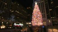 Pohon Natal Setinggi 23 Meter Berdiri di Rockefeller Center AS