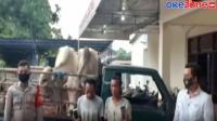 Pencuri Sapi Dihakimi Warga di Desa Cangaan, Gresik