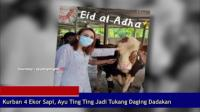 Kurban 4 Ekor Sapi, Ayu Ting Ting Jadi Tukang Daging Dadakan