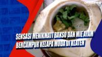 Sensasi Menikmati Bakso dan Mie Ayam Bercampur Kelapa Muda di Klaten