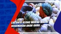 Lucunya Keong Warna Warni Kegemaran Anak-anak di Surabaya Jatim
