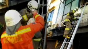 Aksi Heroik Petugas Damkar Selamatkan Dua Anjing dari Kebakaran Ruko