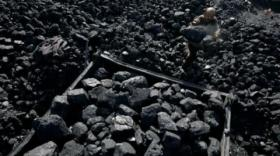 Pemerintah Stop Ekspor Batu Bara Mentah