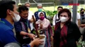 Mentan Kunjungi Pasar Tanaman Hias di Bogor