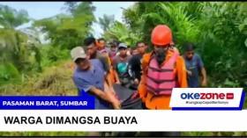 Diterkam Buaya, Petani Tewas di Sungai Batang Sikabau