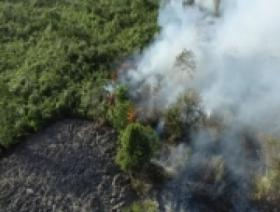 Enam Hektare Lahan Gambut Terbakar di Nagan Raya, Aceh