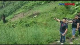 Polisi Ungkap 12 Hektar Lahan Ganja, Mandaling Natal