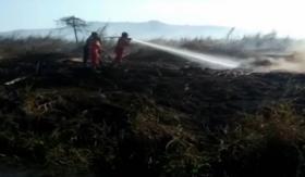 TNI-Polri Gelar Simulasi Penanganan Karhutla di Kolaka Timur