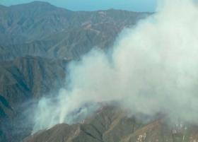 Kebakaran Hutan California, 500 Petugas Damkar Dikerahkan