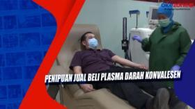 Penipuan Jual Beli Plasma Darah Konvalesen