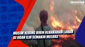 Musim Kering Bikin Kebakaran Lahan di Ogan Ilir Semakin Meluas