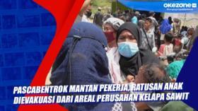 Pascabentrok Mantan Pekerja, Ratusan Anak Dievakuasi dari Areal Perusahan Kelapa Sawit di Kampar Riau