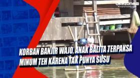 Korban Banjir Wajo, Anak Balita Terpaksa Minum Teh karena Tak Punya Susu