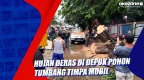 Hujan Deras di Depok Pohon Tumbang Timpa Mobil