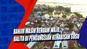 Banjir Masih Rendam Wajo, Balita di Pengungsian Kehabisan Susu