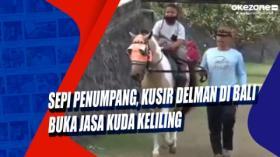 Sepi Penumpang, Kusir Delman di Bali Buka Jasa Kuda Keliling