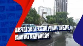 Waspada Cuaca Ekstrim, Pohon Tumbang, Banjir dan Tanah Longsor