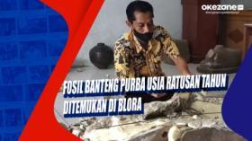 Fosil Banteng Purba Usia Ratusan Tahun Ditemukan di Blora