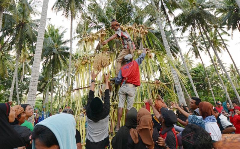Ritual Adat Vunja, Ungkapan Syukur atas Hasil Panen