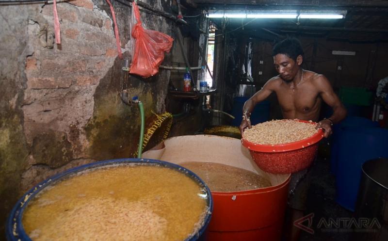 Harga Kedelai Impor Tak Stabil Bikin Ongkos Produksi Meningkat
