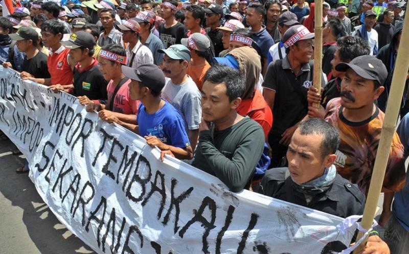 Asosiasi Petani Tembakau Indonesia Tolak Tembakau Impor
