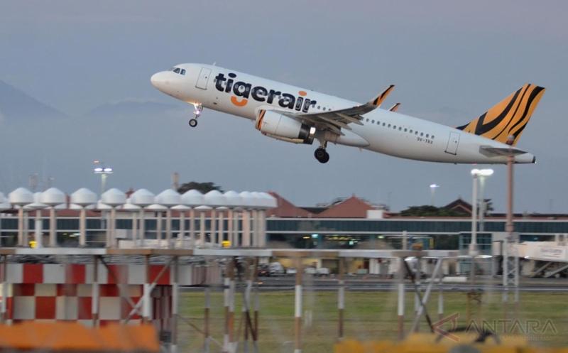 Kemenhub Hentikan Izin Penerbangan Tiger Airways Australia