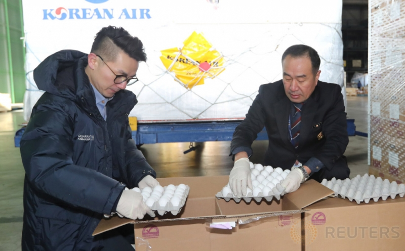Dua petugas dari Badan Karantina Pertanian memeriksa telur yang diimpor dari Amerika Serikat di Bandara Incheon, Korea Selatan, Sabtu (14/1/2017). Pemeriksaan tersebut dilakukan terkait flu burung.