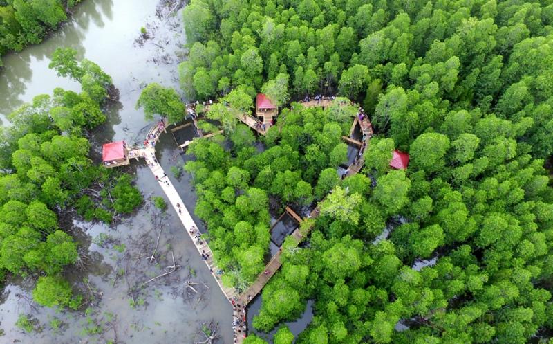 Tarik Wisatawan Gorontalo Buka Ekowisata Mangrove