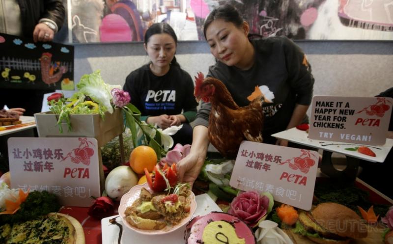 Ayam Bernama Cherry Ikut Kampanye Sehat Konsumsi Sayuran
