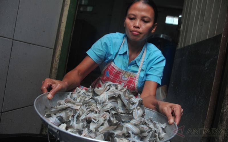 Tulang Ikan Belida Ini Bisa Jadi Cemilan Lho....