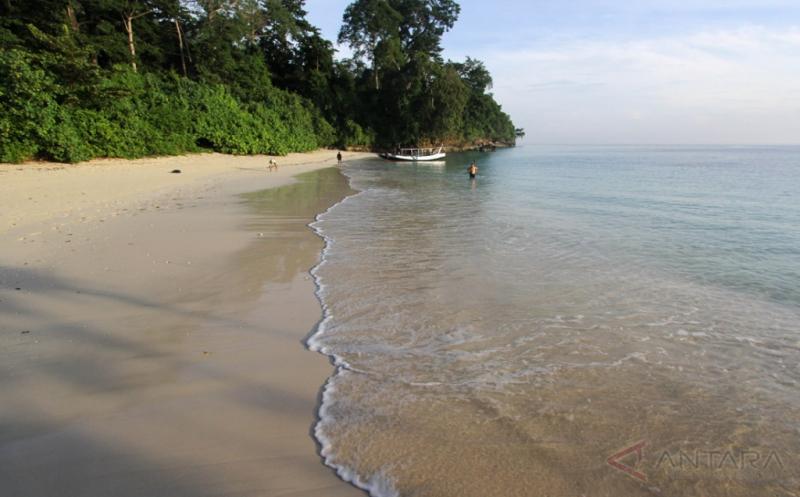 Wisata Pantai Tersembunyi di Taman Nasional Alas Purwo Banyuwangi