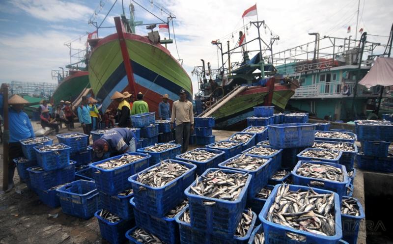 KKP Alokasikan Dana Rp1,4 Triliun untuk Perikanan Tangkap