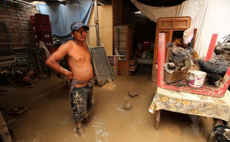 Seorang warga berdiri di dekat ayam, setelah banjir melanda rumahnya di Huachipa, Lima, Peru, Minggu (19/3/2017) waktu setempat. (REUTERS/Mariana Bazo)