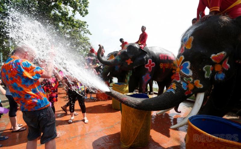 Byurr...Serunya Gajah Semprotkan Turis dengan Air pada Festival Songkran