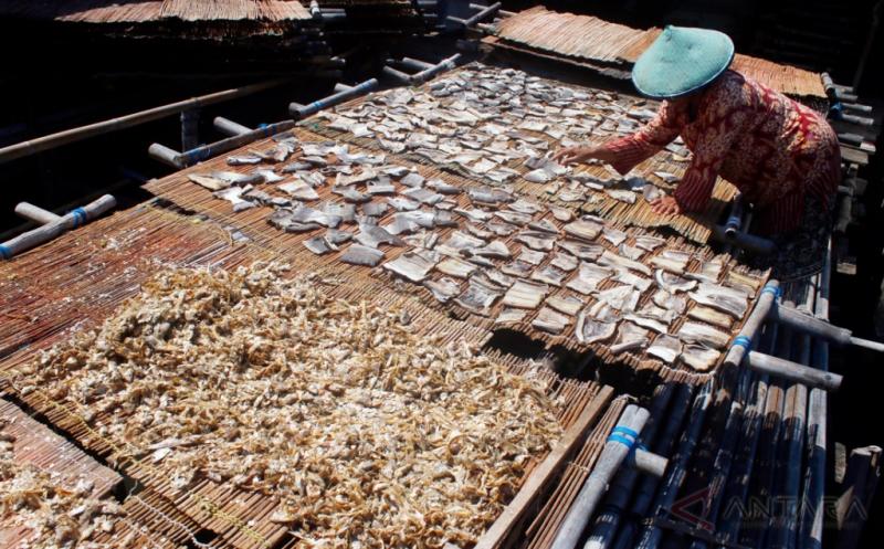 Seorang perajin menjemur ikan asin di Ujung Bom Gudang Lelang, Teluk Betung Selatan, Bandar Lampung, Kamis (20/4/2017). Perajin ikan asin mengeluhkan naiknya harga garam menjadi Rp130 ribu per karungnya yang berdampak pada naiknya biaya produksi.