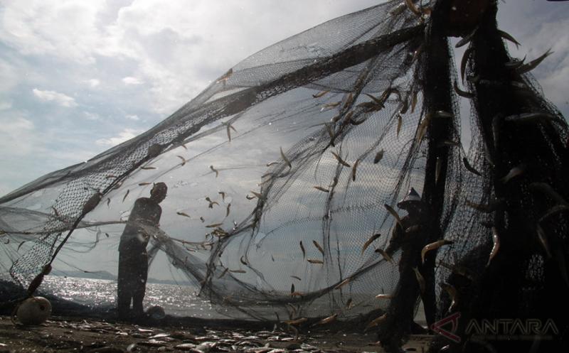 Nelayan melepaskan ikan yang masih tersisa terjerat pada pukat darat di Pantai Kampung Jawa, Banda Aceh, Aceh, Jumat (21/4/2017). Hasil tangkapan ikan di perairan setempat kembali berlimpah menyusul cuaca yang sudah membaik sejak sepekan terakhir.