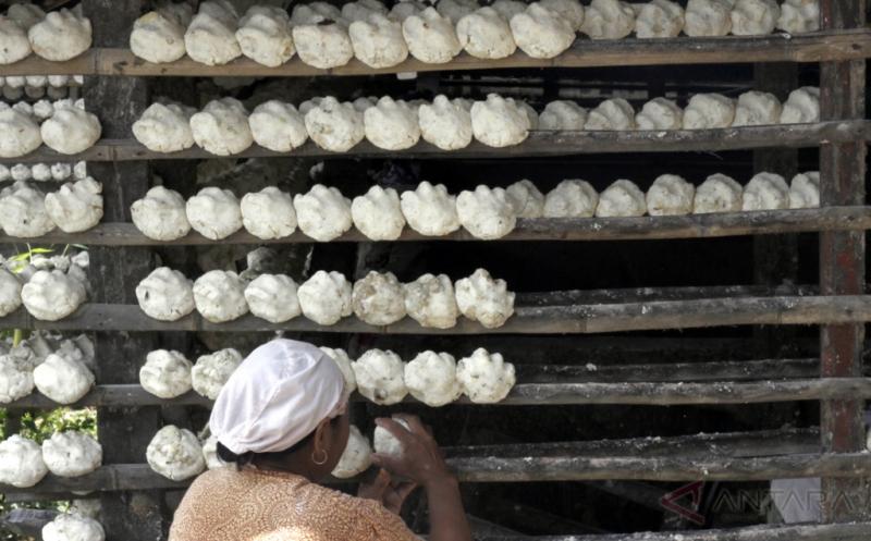 Pembuatan Tepung Tapioka di Kawasan Babakan Madang