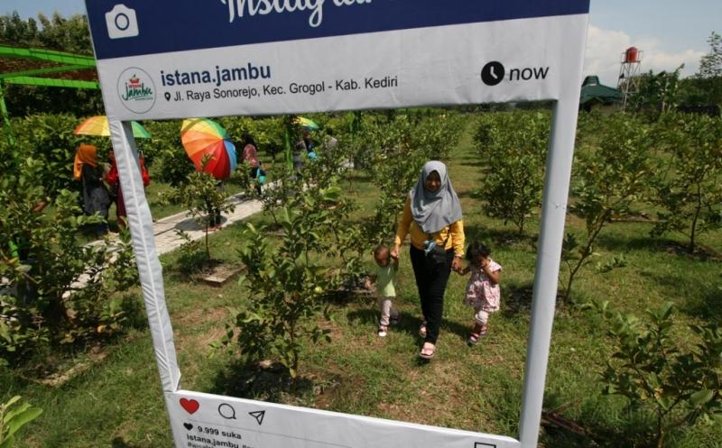 Wisata Istana Jambu Mulai Ramai Dikunjungi Berkat Media Sosial