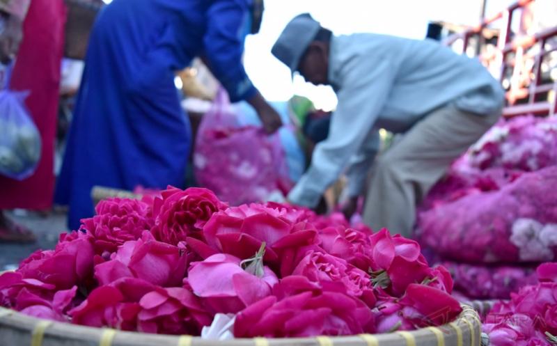Jelang Ramadan Permintaan Bunga Mawar Tabur Meningkat